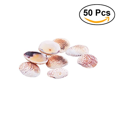 ROSENICE 2-3cm Scallop Seashells Clam Shell Dyed Beads with Holes for Craft Making 50pcs (Scallop Small Shell)