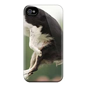 Iphone 4/4s Hard Back With Bumper Silicone Gel Tpu Case Cover Frisby Dog