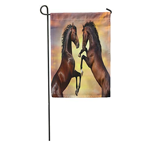 Semtomn Garden Flag Horse Two Bay Stallion Long Mane Rearing Up Against Sunset Home Yard House Decor Barnner Outdoor Stand 28x40 Inches Flag