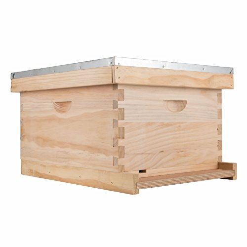 Top recommendation for beehive frames no foundation