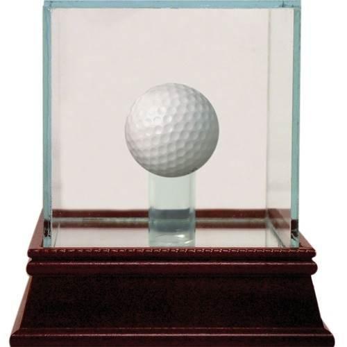 (Steiner Sports Glass Golf Ball Case)