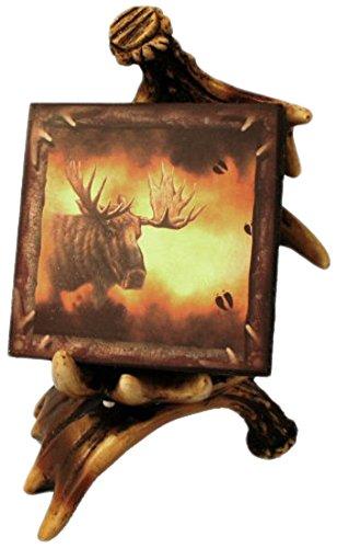 Wildlife Creations Moose Coaster Set (Coaster Moose Set)