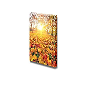 Canvas Prints Wall Art - Yellow/Golden Fallen Leaves in Autumn | Modern Wall Decor/Home Art Stretched Gallery Canvas Wraps Giclee Print & Ready to Hang - 48