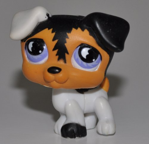 Jack Russell #803 (White, Black/Tan Accents, Blue Eyes) - Littlest Pet Shop (Retired) Collector Toy - LPS Collectible Replacement Figure - Loose (OOP Out of Package & -