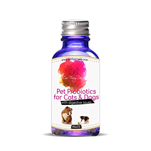 Our Furry Pals Pet Probiotics for Cats and Dogs with Digestive Issues (Pal Furry)