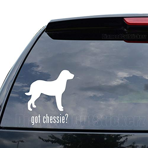 Chesapeake Bay Retriever Sticker - GOT Chessie Chesapeake Bay Retriever Dog PET Decal Sticker Car Truck Motorcycle Window Ipad Laptop Wall Decor - Size (05 inch / 13 cm Tall) - Color (Matte White)