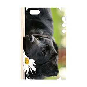 ALICASE Diy Customized Case Dog 3D Case for iPhone 5,5S [Pattern-1]