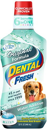 Dental Fresh Dental Care - SynergyLabs Dental Fresh Water Additive - Original Formula For Dogs - Clinicially Proven, Simply Add to Pet's Water Bowl to Whiten Teeth, Eliminate Bad Breath, and Improve Oral Health (32 oz. Bottle)