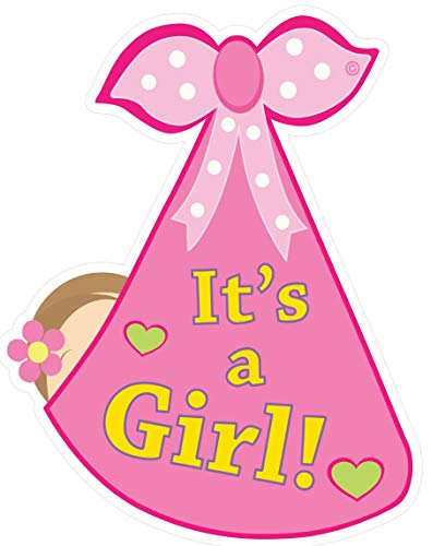 Cute News It's a Girl Baby Door Sign - Welcome Stork Birth Announcement Hanger - Hospital Newborn Wreath - Shower Decoration Greeting Banner - Gender Reveal - Great Pregnancy Gift for Parents - Pink