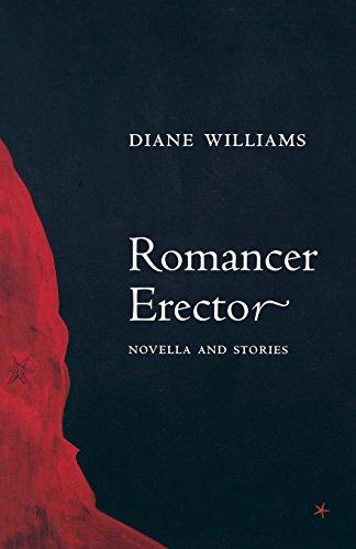 Romancer Erector (American Literature (Dalkey Archive))