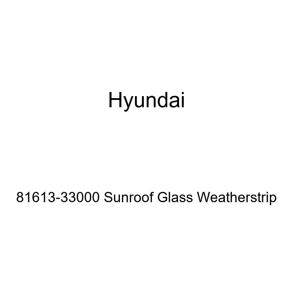 Genuine Hyundai 81613-33000 Sunroof Glass Weatherstrip
