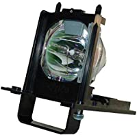 Mitsubishi 915B455011 Replacement Lamp w/Housing 6,000 Hour Life & 1 Year War...