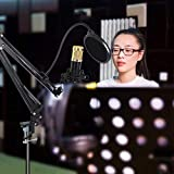 Queen.Y Professional Condenser Microphone Recording
