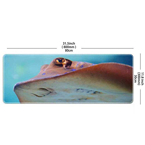 Mouse Pad Rectangle Mouse Pad Animal Aqua Aquarium Colorful Diving Fish Marine #21917 Durable 260mm210mm3mm