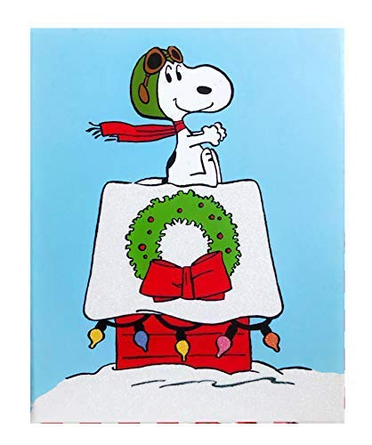 Snoopy Christmas Cards.Amazon Com Graphique Snoopy Christmas Holiday Cards 6 8