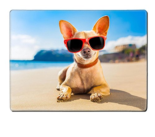 Luxlady Natural Rubber Placemat IMAGE ID: 32316162 chihuahua dog at the ocean shore beach wearing red funny - Sunglasses Id Price