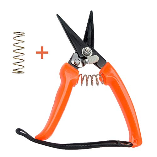 Hoof Trimmers Goat Hoof Trimming Shears Nail Clippers for Sheep, Alpaca, Lamb Hooves Multiuse Carbon Steel Shrub Trimmer with Stronger Spring -