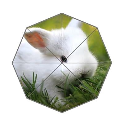 Mignon Lapin de bébé Blanc Parapluie