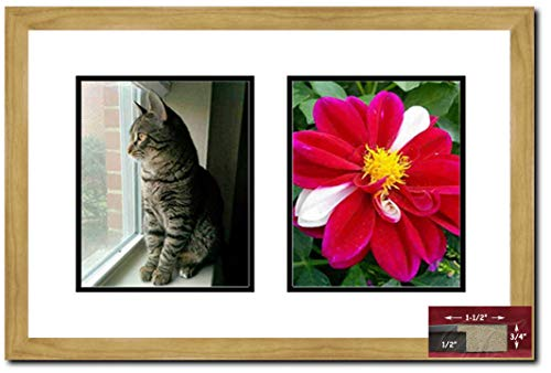 Frames by Mail Light Oak 2 Opening Picture, 8 x 10, Brown