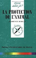 La protection de l'animal
