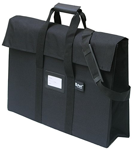X-Port Professional Expandable Art Portfolio Case (16