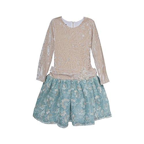Isobella & Chloe Little Girls Light Blue Lace Velvet Drop Waist Dress 6