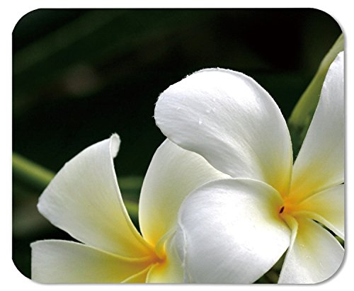 Mouse Pad White Plumeria 34628 Oblong Shaped Mouse Mat Design Natural Eco Rubber Durable Computer Desk Stationery Accessories Mouse Pads For Gift
