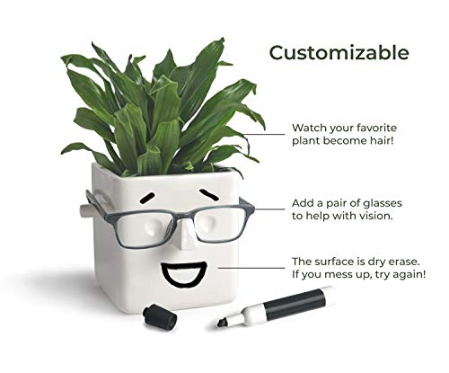 30 Watt, FACE Planter Holds Your Plants, Flowers, Glasses and You can Draw on it. Perfect Novelty Gift for Any Occasion. Elegant Ceramic Vase for Succulents, Cacti or Your Average Fern for Your Home.