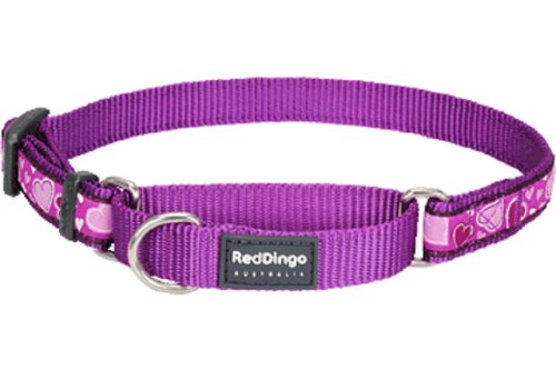 Red Dingo Designer Martingale Dog Collar, Small, Breezy Love Purple