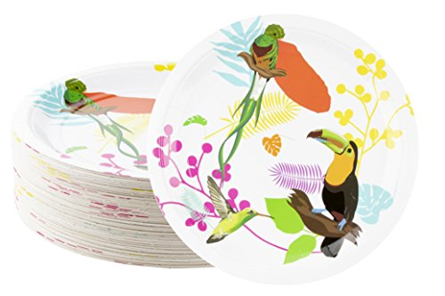 Disposable Plates - 80-Count Paper Plates, Tropical Party Supplies for Appetizer, Lunch, Dinner, and Dessert, Kids Birthdays, Toucan and Birds Design, 9 x 9 inches