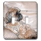 3dRose Jos Fauxtographee- Shih Tzu Sitting on Couch - A super cute Shih Tzu Doggie chilling on the couch in tan - Light Switch Covers - double toggle switch (lsp_291062_2)