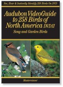(Audubon's VideoGuide to Birds of North America DVD II Song and Garden Birds)