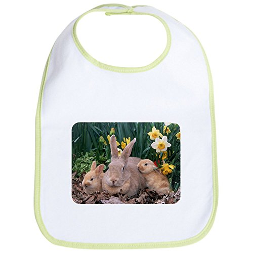 Price comparison product image Royal Lion Baby Bib Spring Easter Bunny Rabbits - Kiwi