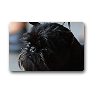 CustomLittleHome Cute Affenpinscher Puppy Custom Doormats Rug Non Slip Mats Indoor/Outdoor/Bathroom/Decor Area Rug(23.6x15.7 inch) 2