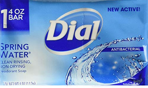 (Dial All Day Freshness Spring Water Bar Soap, 4 ounces 22 Bar)