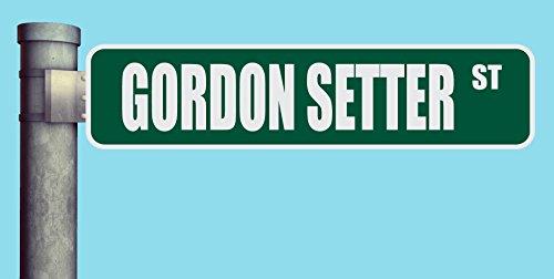 GORDON SETTER ST STREET SIGN HEAVY DUTY ALUMINUM ROAD SIGN 17