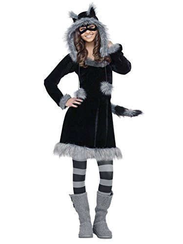Fun World Sweet Raccoon Teen Costume, Black,Junior