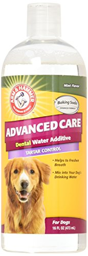 Care Tartar - Arm & Hammer Advanced Pet Care Tartar Control Dental Water Additive - Mint Flavor 16 Fluid Ounces