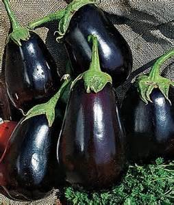 OrOlam Eggplant Black Beauty Organic 250 Seeds Heirloom Seeds (Solanum Melongena)