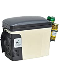 Generic Compact Portable Vehicle Refrigerator Beverage Car Cooler Food Warmer 110V/12V Thermoelectric Truck Fridge,6L