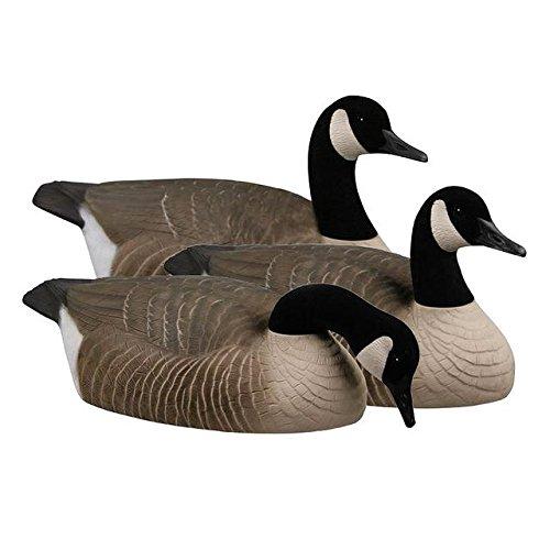greenhead-gear-canada-goose-shells