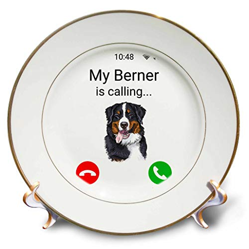 - 3dRose Carsten Reisinger - Illustrations - My Berner is Calling Funny Incoming Phone Call Bernese Mountain Dog - 8 inch Porcelain Plate (cp_316980_1)