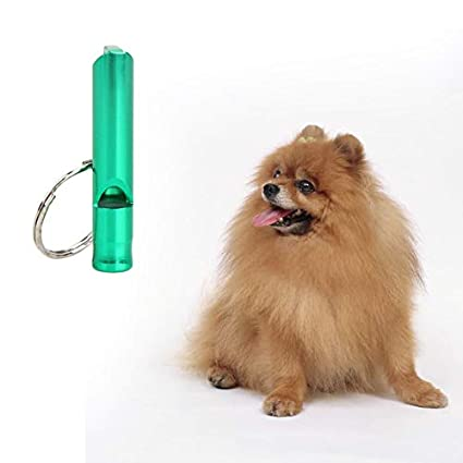 Amazon.com: Dog Whistle - Dog Whistle Keychain Pendant ...
