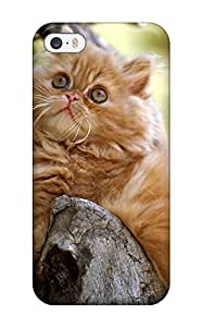 New Arrival Cover Case With Nice Design For Iphone 5/5s- Persian Cats