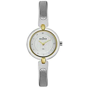 Skagen Women's 354SGSC Steel Collection Crystal Accented Mesh Two Tone Stainless Steel Bracelet Watch