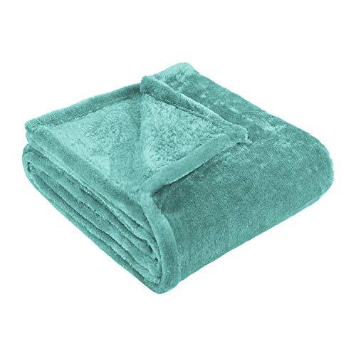 Blue Nile Mills Ultra-Soft, 100% Micro Polyester Fleece Blanket, Full/Queen, -