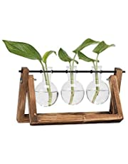 Hyindoor Bulb Vase with Vintage Wooden Stand and Metal Rotating Rod for Hydroponics Plants Desktop Glass Planter for Home Decoration