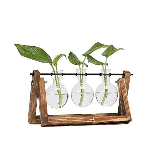 (HYINDOOR Desktop Plant Terrarium Glass Planter Bulb Vase with Retro Solid Wooden Stand and Metal Swivel Holder for Hydroponics Plants Home Garden Wedding Decor)