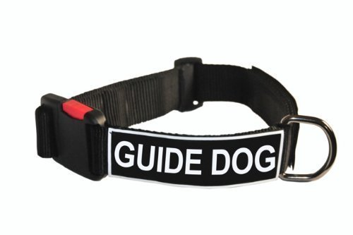 Dean and Tyler Patch Collar , Nylon Dog Collar with Guide Dog Patches Black Size  Medium Fits Neck 21-Inch to 26-Inch