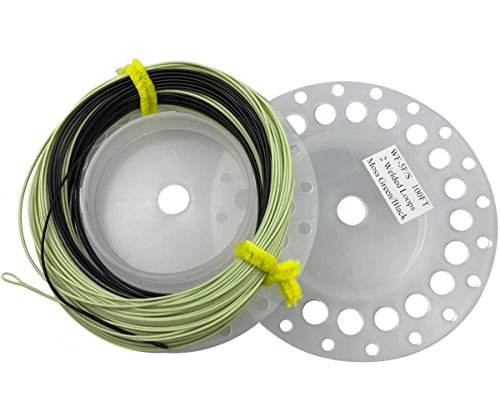 JSHANMEI Sinking Tip Fly Line 3ips Weight Forward Design 100FT WF-5F/S